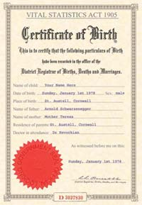 JOKE BIRTH CERTIFICATE